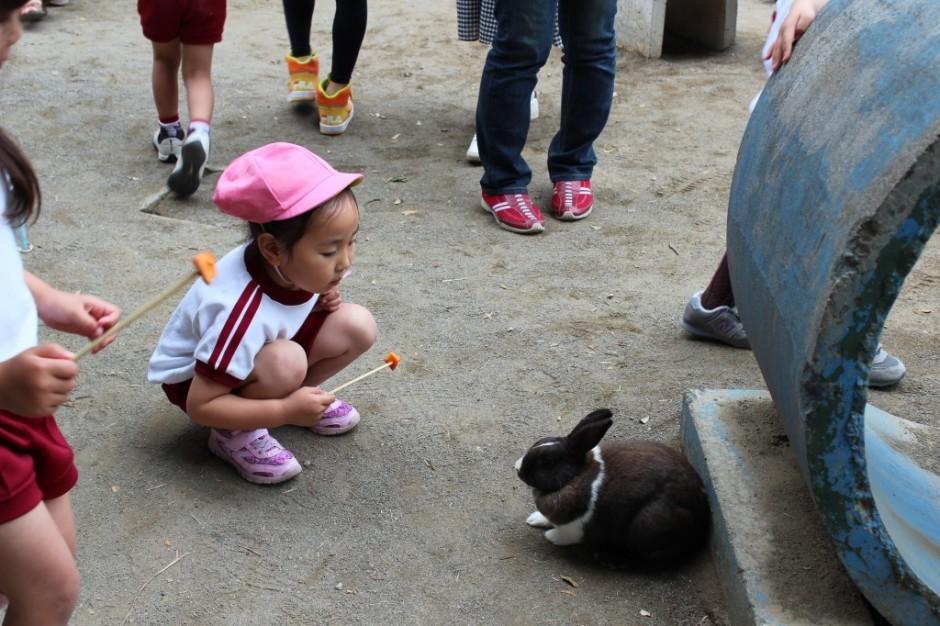 28年親子遠足 ウサギにもニンジンをあげられました。