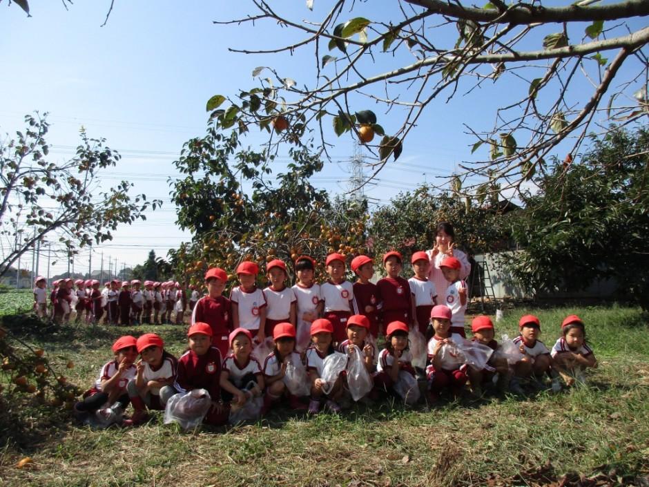 柿狩り。10月9日柿狩り日より ばら組