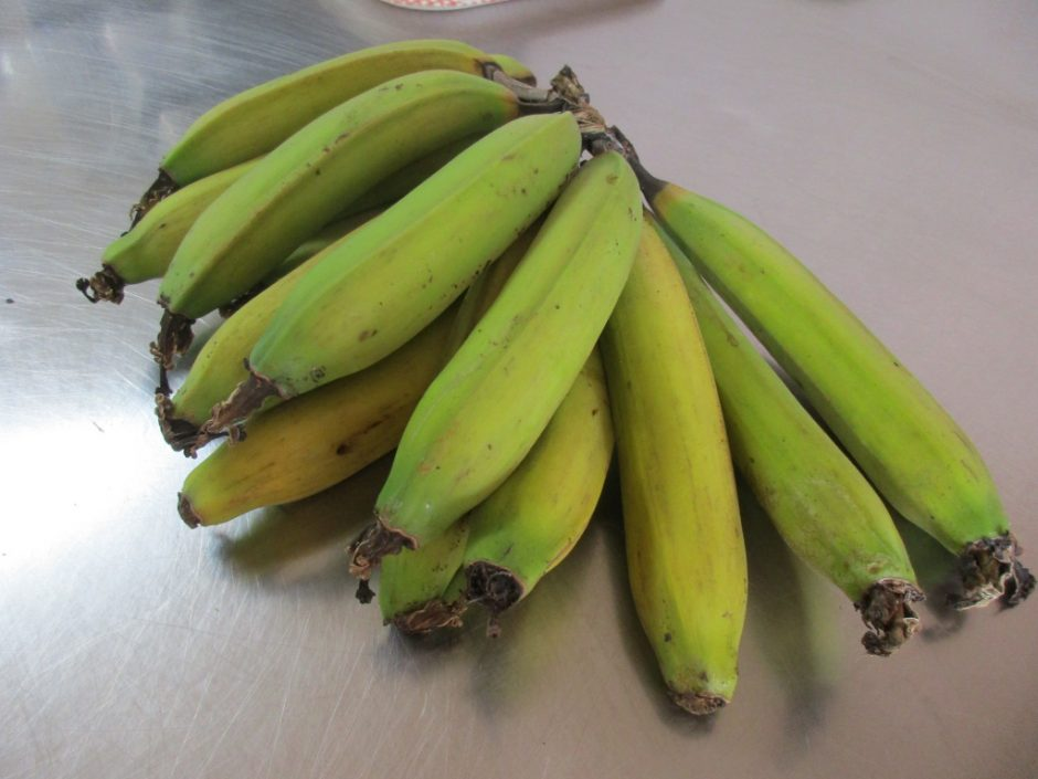 園で採れた 正真正銘の国産バナナです!今日は年長・年中さんに提供しました。年少さん待っててね♪