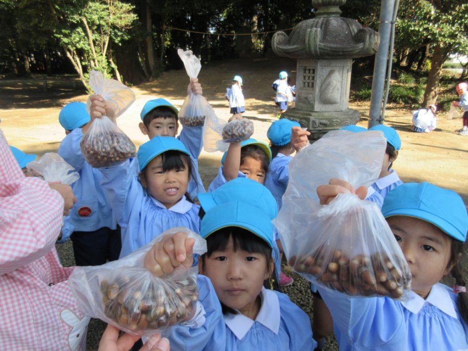 11月 お誕生会 日枝神社にみんなでお散歩(*'∀')どんぐりをたくさん拾いました
