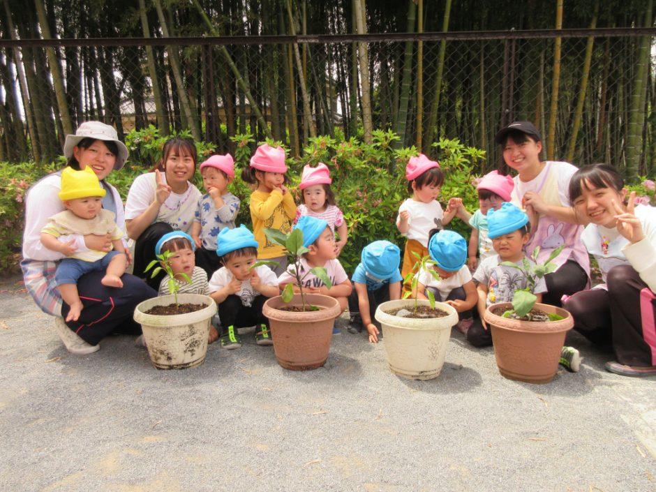 お野菜の苗植えをしましたよ(*^-^*) 大きく育ちますように!きっとおうちにいるみんなの気持ちも届くはず♪
