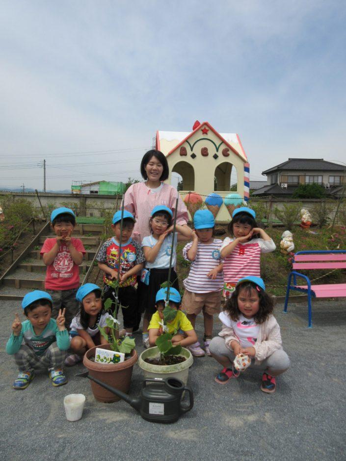 お野菜の苗植えをしましたよ(*^-^*) 年中さんはきゅうりです☆