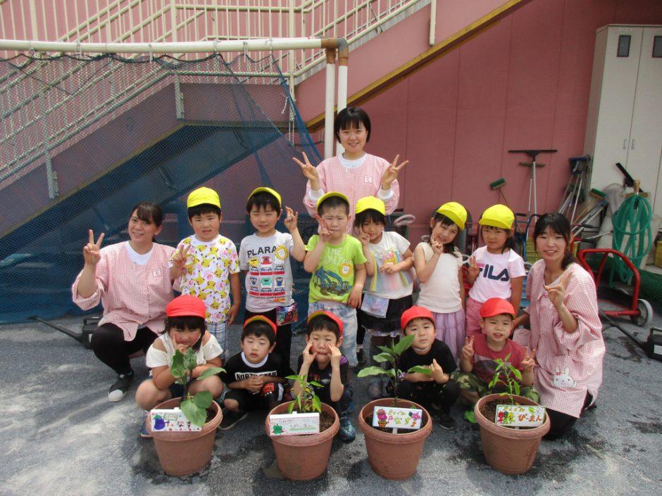 お野菜の苗植えをしましたよ(*^-^*) お手製の看板がかわいいです(*'▽')