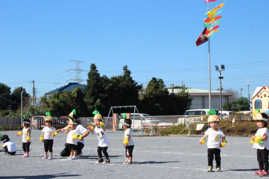 10月2日 運動会 保育園部 ゆうぎ「パンパヤパーンパイナップル」 かわいいパイナップルに変身して一生懸命踊っています♪