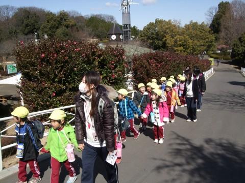 おわかれ遠足(年長きく) 3月3日、年長さんのおわかれ遠足で「こども動物自然公園」へ行きました!