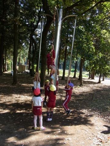 2014.11 園外保育(きく) 子どもたちはどれも元気に遊べました!