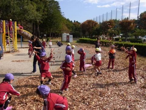 2014.11 園外保育(きく) 葉っぱと戯れる子どもたち・・・