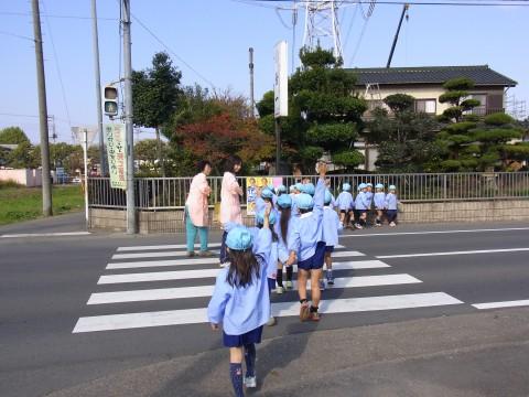 交通安全指導 今度は信号を見て横断歩道を渡ります