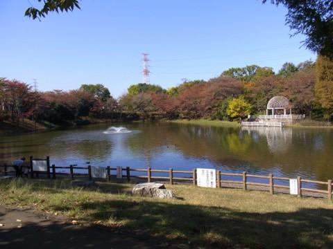 園外保育 ゆり・もも 御伊勢塚公園ってこんなところ。遊具もあるよ!