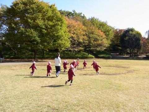 園外保育 ゆり・もも ② ひろ~~~い芝生の上で思いっきり体を動かしました!